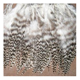 feather-craft FEATHER-CRAFT 4