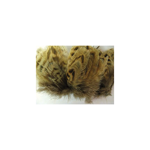 feather-craft Hen Pheasant Body Feathers