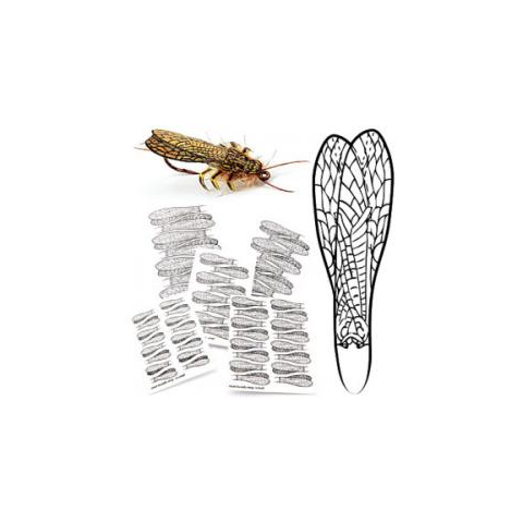 PRO Adult Stonefly Wing