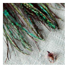 feather-craft FEATHER-CRAFT Extra Fine Peacock Herl