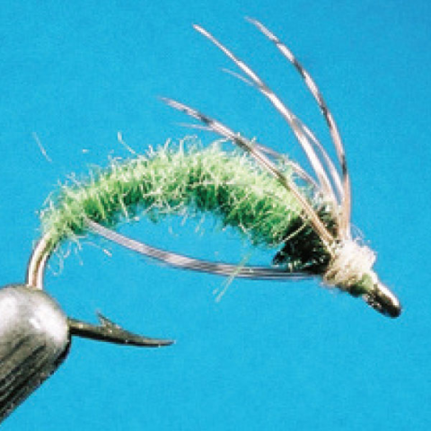 feather-craft FEATHER-CRAFT #42 Green Caddis Hook
