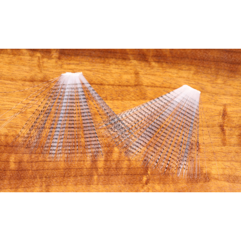 Barred Mayfly Tails