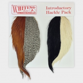 whiting WHITING Cape Introductory Hackle Pack