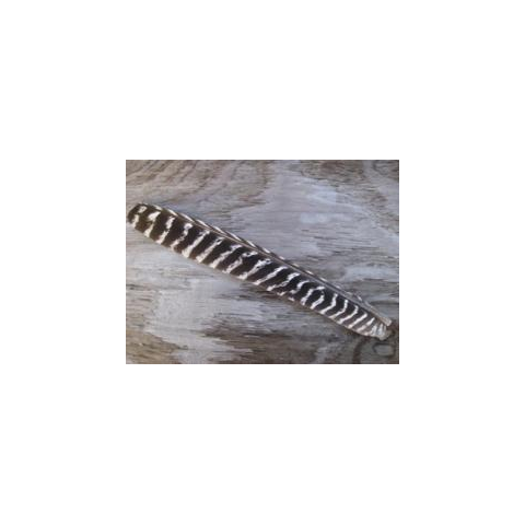 feather-craft FEATHER-CRAFT Wild Turkey Pointer Wing Quills