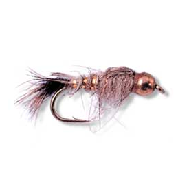 BH Gold Ribbed Hares Ear