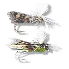 50% OFF! E-Z Caddis