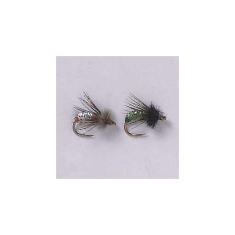 Graphic Caddis