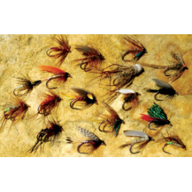 feather-craft FEATHER-CRAFT Davy Wotton Wet Fly Assortment