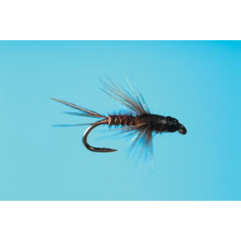 MORRIS Bead Head Anatomical BWO