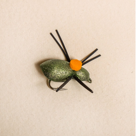 rainys Whitlock's Bright Spot Beetle