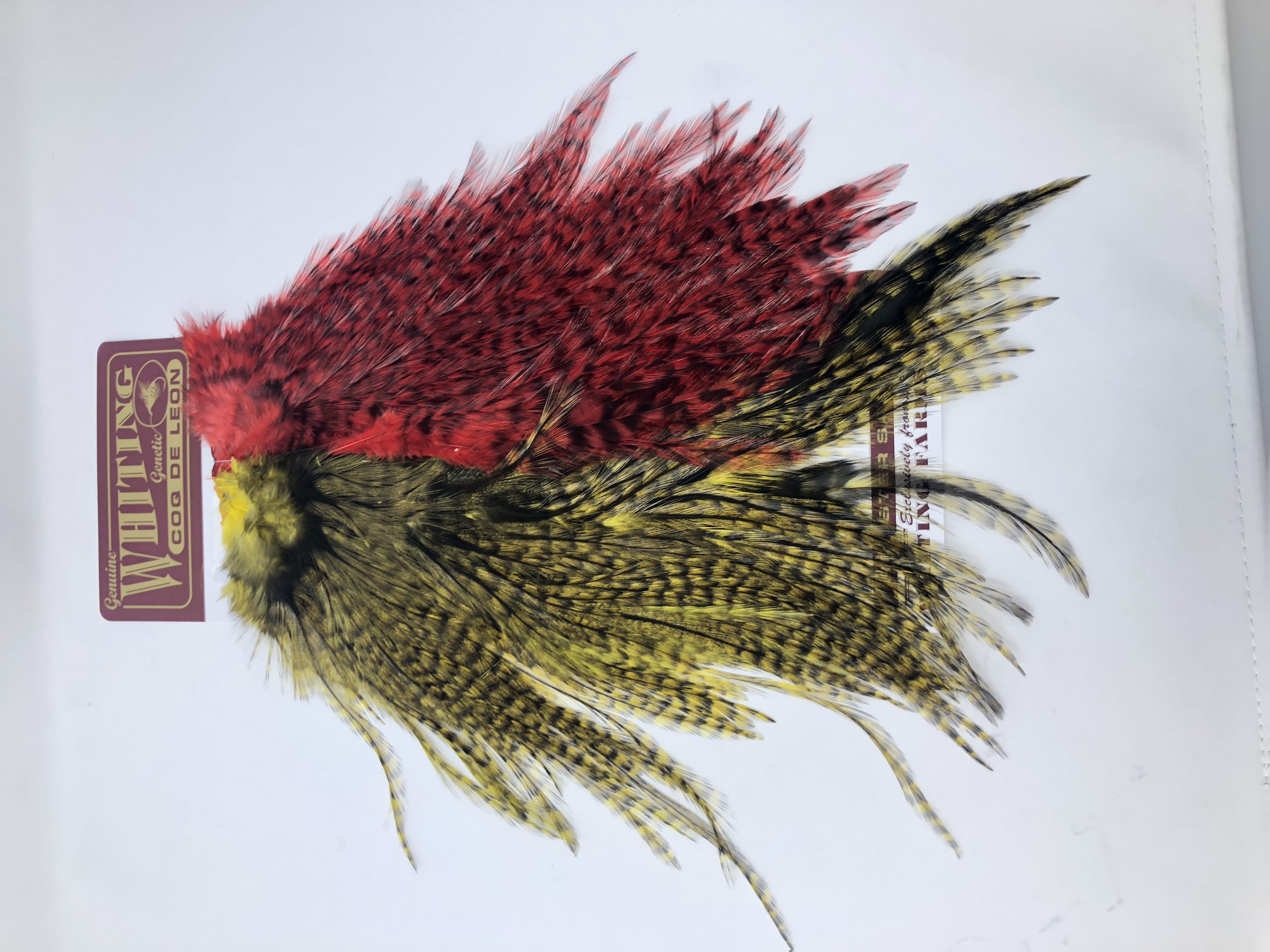 Feather Whiting Large Grizzly Variant Dry Fly Hackle Craft Millinery Fly F