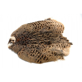 feather-craft FEATHER-CRAFT Hen Ringneck Pheasant Skins