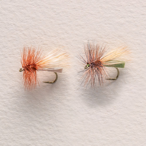 Putterbaugh's Foam Caddis