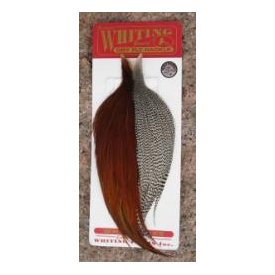 whiting WHITING Bronze Cape Combo Starter Set